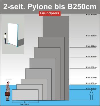 Pylone B250cm