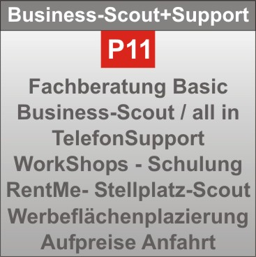 P11-BusinessScout